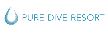 Pure Dive Resort – Eco Friendly Dive Resort on Nusa Penida