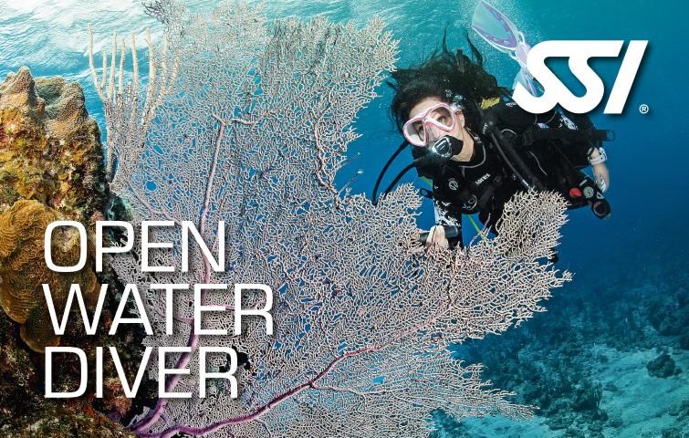 Open Water Diver Course Core Diving Course